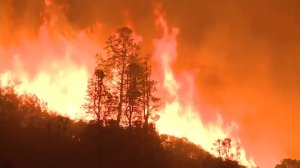 Large wildfire burning in northern California (Image: CBS News)