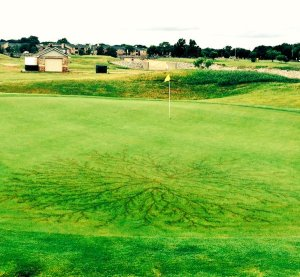 Scar of the ground current of a lightning strike on a golf course (Photo: Anna Garcia)