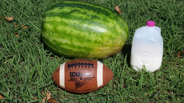 """Photo of """"Truck Buster"""" watermelon, next to a football and a gallon of milk for reference. (James Barrentine)"""