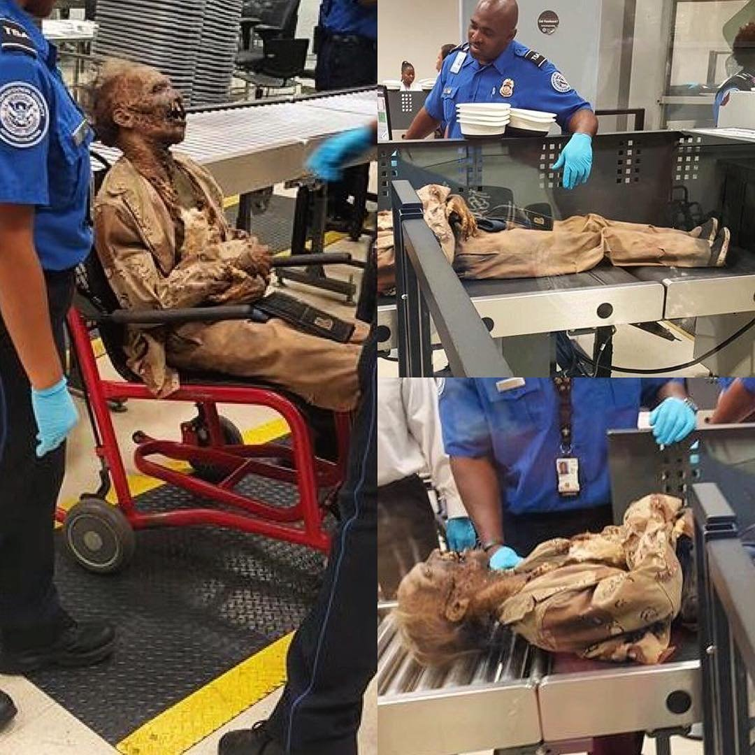 Most travelers are well versed in the dos and don'ts of what to take on a plane, but some clearly didn't get the memo. Here's a look at some of the most outrageous items which never made it past the TSA's X-ray machines this year.