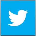 Twitter icon copy