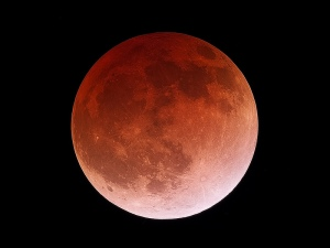 Wake up to a Lunar Eclipse Wednesday AM
