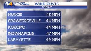 Wind Gusts 5 Line