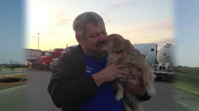 Dogs unusual journey trucker