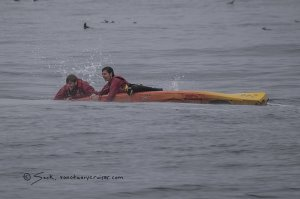 Whale lands on kayakers