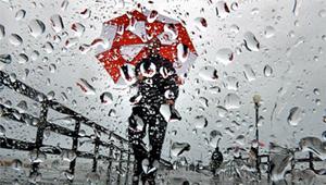 rainy-day-pic