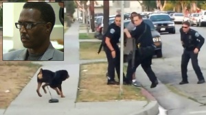hawthorne-dog-owner-charged