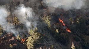 wrightwood-fire