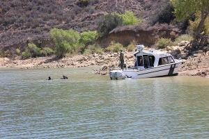 divers search for bryce laspisa
