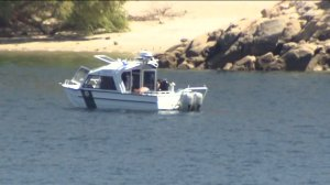 castaic lake search