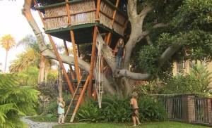 venice-treehouse