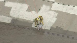 Firefighters_Rescue_Man_From_LA_River