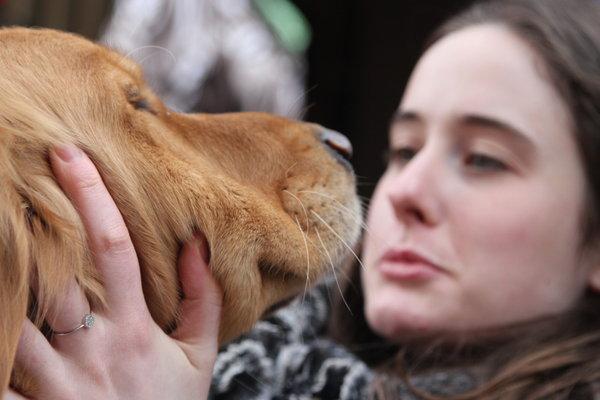 la-four-comfort-dogs-visit-boston-prior-to-marathon-20140419