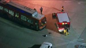 bus-vs-motorcycle-northridge