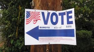 vote-election-Ho-John-Lee