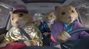 dancing-hamster-kia