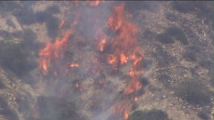Flames were visible as a fire broke out near the Brand Library Park in Glendale on June 22, 2014. (Credit: KTLA)