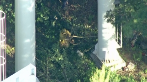 Firefighters worked near the base of the ride during the rescue operation. (Credit: KTLA)