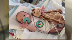 Baby Brayden, born prematurely after his mother's sudden death, will be going home on Sept. 2, 2014. He is seen in this photo provided b his family.