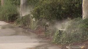 A file photo shows sprinkler spilling water on sidewalks. (Credit: KTLA)