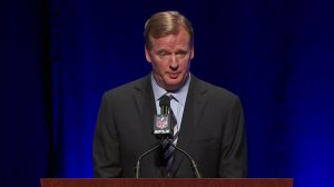 An increasing number of critics think National Football League Commissioner Roger Goodell, seen in this file photo, should be fired over his handling of Ray Rice's punishment.