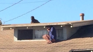 A picture captured by Twitter user @Venice311 showed a women hiding from a man who had allegedly broke into her home.