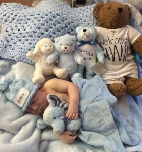 Newborn Shane Michael Haley was photographed surrounded by Teddy bears after his birth. (Credit: Prayers for Shane)