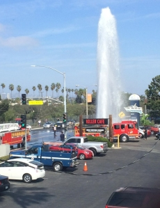 Killer Shrimp Manager Megan Peery took this photo of a geyser of water outside the restaurant on Oct. 14, 2014.