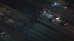 Ferguson protesters stopped traffic on the 101 Freeway in downtown Los Angeles on Nov. 25, 2014. (Credit: KTLA)