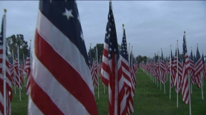 Some 2,000 American Flags place at the Field of Valor in Covina for Veterans Day on Nov. 11, 2014. (Credit: KTLA)