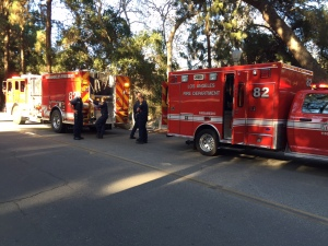 Los Angeles firefighters responded to a critically injured hikers in Griffith Park Nov. 3, 2014. (Credit: KTLA/Liberte Chan)