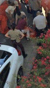 A witness captured cellphone video of zoo personnel treating an escaped bighorn sheep shortly before she died on Nov. 22, 2014.