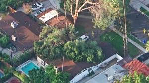 A tree fell on top of a house in Winnetka on Thursday, Nov. 13, 2014. (Credit: KTLA)