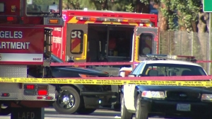 Los Angeles police shot and killed a knife-wielding man in Van Nuys on Sunday, Nov. 9, 2014, officials said. (Credit: KTLA)