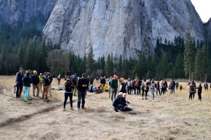 Crowds watch and wait anxiously in El Capitan Meadow on Jan. 10, 2015. (Credit: Tome Evans / elcapreport.com)