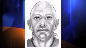 Authorities released a composite sketch of a man suspected of kidnapping and sexually assaulting a 15-year-old girl in the San Gabriel Valley on Friday, Jan. 2, 2015. (Credit: Los Angeles County Sheriff's Department)