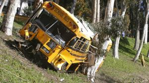 An Orange Unified school bus veered up an embankment, sheered off a tree and came to rest against another one on April 24, 2014. Five students and the driver were taken to hospitals. (Credit: Robert Lachman / Los Angeles Times)