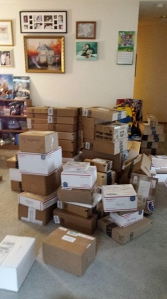 Boxes of mail are stacked up for Bubby Everson. (Credit: Brandi McNerney-Everson)