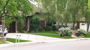 Greg Greenstein says he replaced his grass with artificial turn in response to California's drought conditions. (Credit: KTLA)