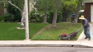 Greg Greenstein's artificial turf lawn is seen next to their neighbor's real grass lawn. (Credit: KTLA)