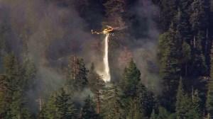 Fire crews battle the Lake Fire in the San Bernardino National Forest on Friday, June 19, 2015. (Credit: KTLA)