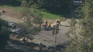 Pasadena firefighters responded after a tree fell and injured three people at Kidspace on July 28, 2015. (Credit: KTLA)