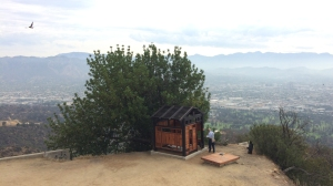 A man enjoys the Griffith Park Teahouse on July 2, 2015, two days after it mysteriously appeared overnight. (Credit: Melissa Pamer / KTLA)