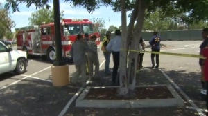 Riverside firefighters responded to a bee swarm on Aug. 3, 2015. (Credit: KTLA)