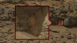Alien hunters claim to have found evidence of life on Mars in photos taken by Curiosity rover. NASA scientist says there may be life on Mars, but only at the microbial level. (Credit: NASA)