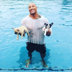 A photo from his Facebook page shows Dwayne Johnson after he rescued Brutus and Hobbs after they fell into the swimming pool Labor Day weekend.