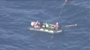 A rescue team approaches an entangled blue whale off San Pedro on Friday, Sept. 4, 2015. (Credit: KTLA)