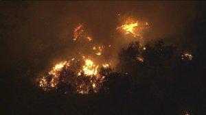 A fire is seen in Elysian Park on Oct. 30, 2015. (Credit: KTLA)