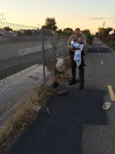 The Los Angeles County Sheriff's Department provided this image of a newborn girl on Nov. 28, 2015, a day after she was found abandoned in Compton.
