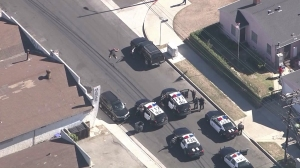 The driver in an LAPD pursuit lays down in Wilmington at the end of a chase on Nov. 6, 2015. (Credit: KTLA)
